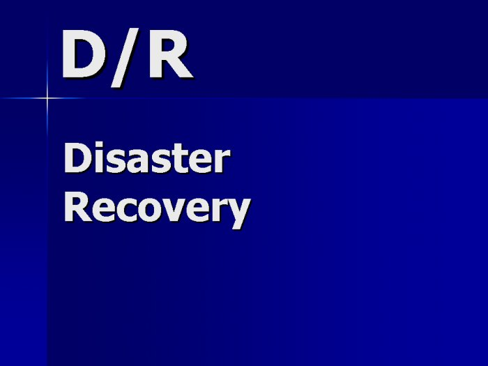 Disaster Recovery Support Contractor