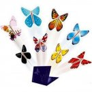 Surprise butterfly for 3 pcs