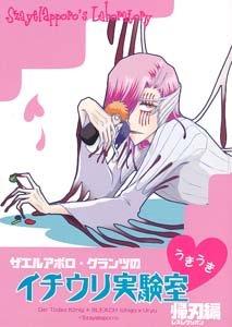 Bleach Shonen ai Doujinshi IchigoXUryuu (w. Aporro)