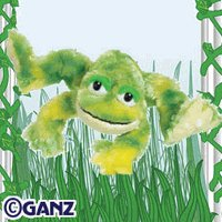 Webkinz Tie-Dye Frog