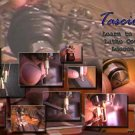 "Tascione ""Learn to Turn Lathe Course, Lesson 1"" 2 DVD's"
