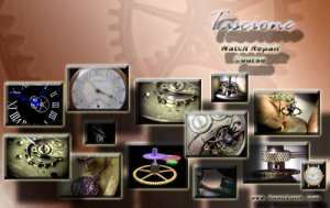 """Tascione Watch Course """"Stems, Sleeves & Crowns"""" on DVD"""