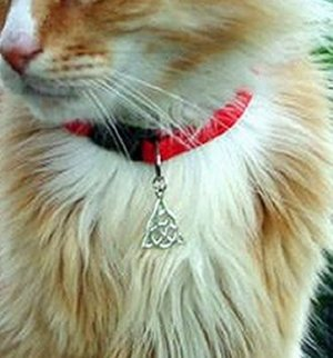 Witches Familiar Kitty WB CHARMED Triquetra Cat Collar