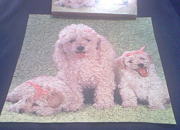 PRIMA DONNAS~JIGSAW PUZZLE~POODLE DOG PUPPIES~HAS ALL 500+ PCS~1982~EATON