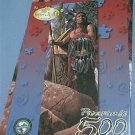SERENDIPITY PANORAMIC 500 PC JIGSAW PUZZLE ~EAGLES WATCH HIM~AMER. INDIAN WARRIOR~COMPLETE