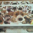 PIATNIK 1000 PC JIGSAW PUZZLE ~YONEO MORITA~DOGS~COMPLETE~DOGS, DOGS, DOGS~AUSTRIA