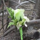 Green Rose Bud Boutonniere for Wedding or Prom 3102