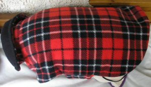 Red Watch Plaid With Black Velvet Collar