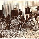 Real Photo-Oyster shuckers in Apalachicola, 1909