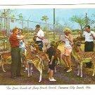 Vintage postcard of the Deer Ranch at Long Beach Resort in Panama City Beach, Florida - mid 1950's