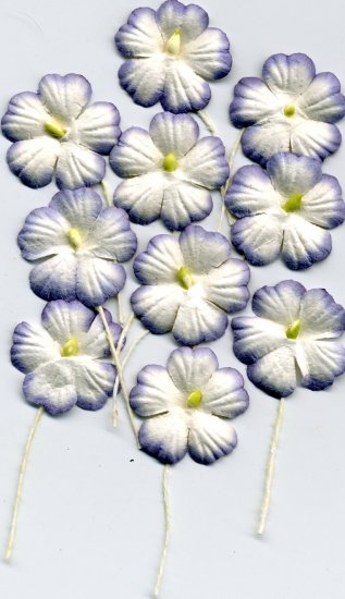 10 Purple and White Flowers w/ Pollen Stem Card Topper