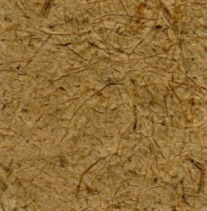 10 Brown With Fiber Scruffy Mulberry Paper cards