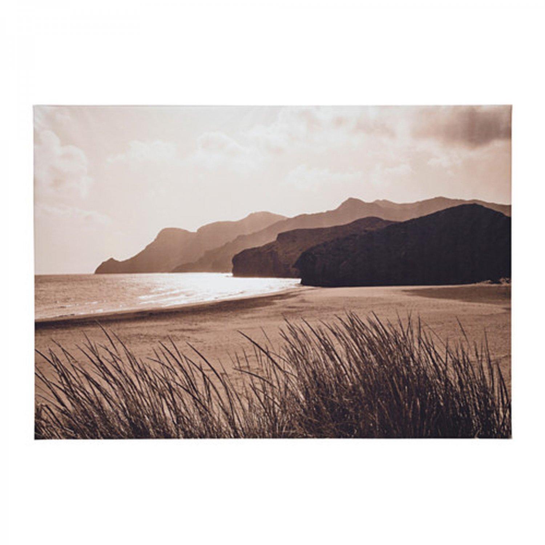 IKEA Premiar SEA GRASS Ocean Headlands Beach Sand CANVAS WALL ART Print Seagrass Sepia PREMI�R