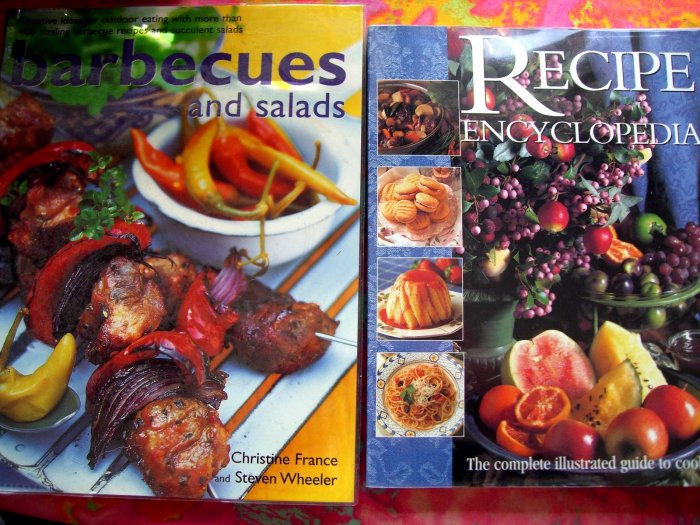 TWO HUGE COOKBOOK Together over 1000 RECIPES!  BBQ & SALAD AMAZING!