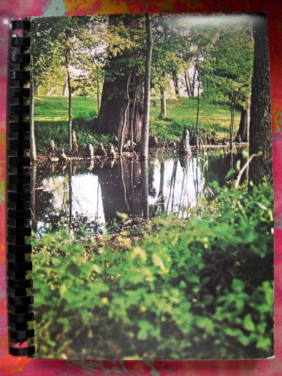 SOLD!  BAYOU CUISINE : IT'S TRADITIONS AND TRANSITIONS Cookbook Indianola Mississippi