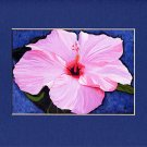 Hawaii HIBISCUS Flower Spring, Pinks, Reds & Violet Blue Botanical Matted Print, Renee Rutana