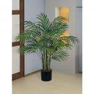 Areca Silk Palm Tree 3 ft