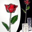"""The 11"""" 25th Anniversary Rose"""