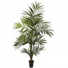 7' Kentia Palm Tree