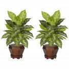 Dieffenbachia Silk Plant