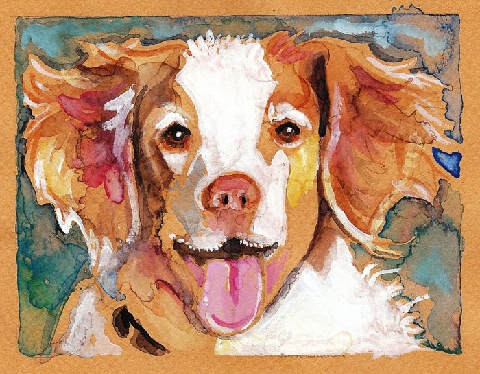 """Brittany Spaniel"" Watercolor Painting Print"