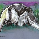 """Giant Anteater"" Watercolor Painting Print"