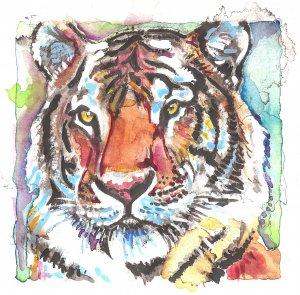 """Tiger"" Watercolor Painting Print"