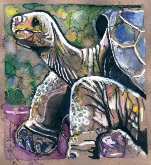 """Galapagos Tortoise"" Watercolor Painting Print"