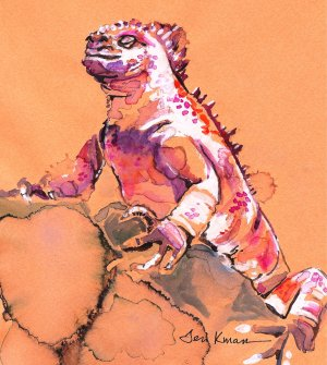 """Smug Marine Iguana"" Watercolor Painting Print"
