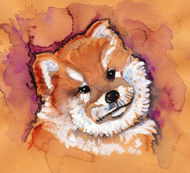 """Chow"" Watercolor Painting Print"