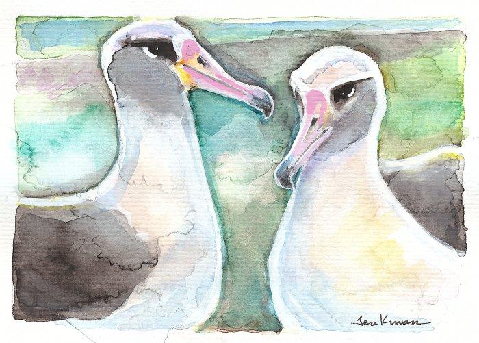 """""""Albatross Pair"""" Watercolor Painting Print"""
