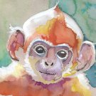 Monkey Watercolor Painting Print