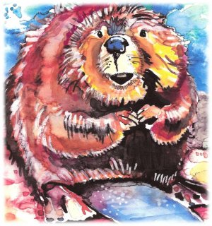 """Beaver"" Watercolor Painting Print"