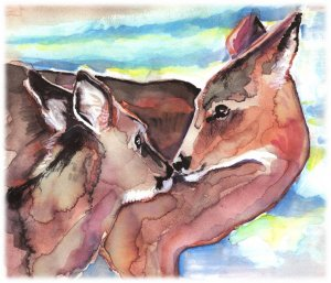 """""""White-tailed Deer"""" Watercolor Painting Print"""