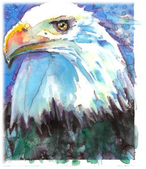"""Bald Eagle"" Watercolor Painting Print"