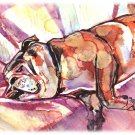 """Napping Bulldog"" Watercolor Painting Print"