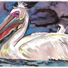 """White Pelican"" Watercolor Painting Print"