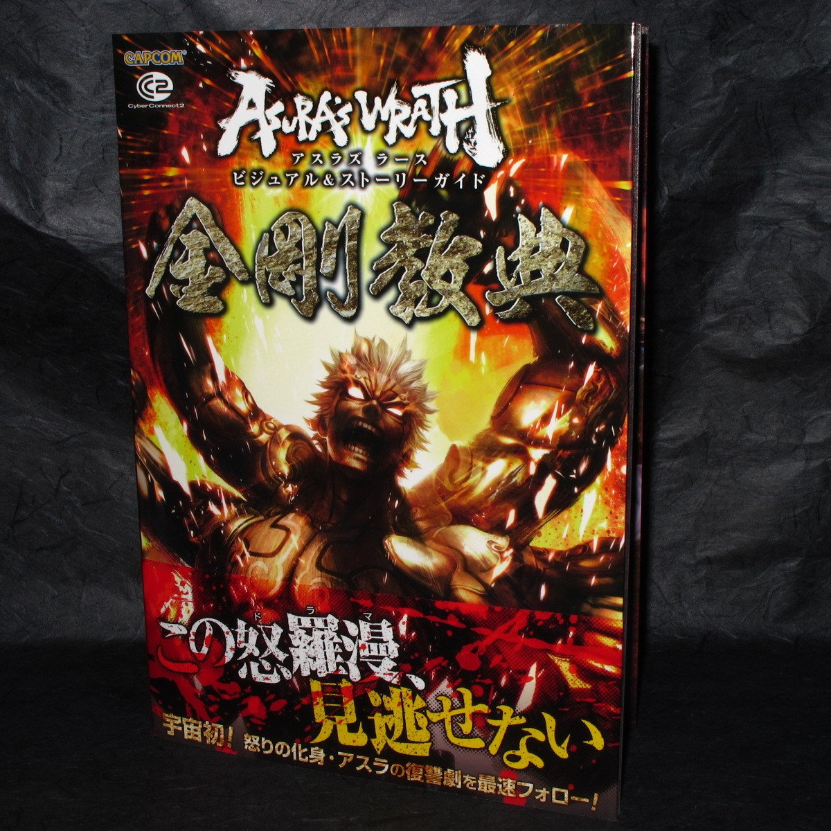 Asura's Wrath Visual and Story Guide Capcom Japan Game Guide and Art Book