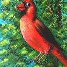 Cardinal / ACEO Original Acrylic Painting by R.J.