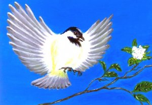 Chicadee / ACEO Original Acrylic Painting by R.J.