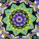 Mandala #001 / ACEO Original Acrylic Painting by R.J.