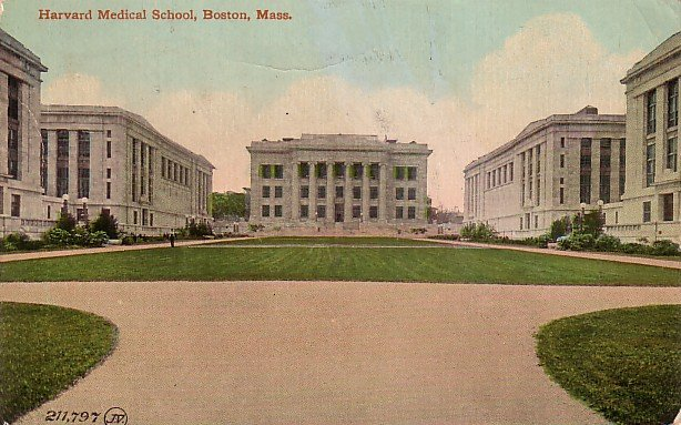 Harvard Medical School in Boston Massachusetts MA, 1912 Vintage Postcard - 3489