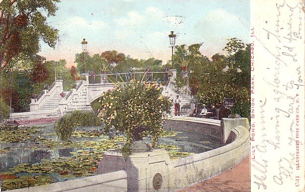 Lily Pond in Union Park at Chicago Illinois IL, 1907 Vintage Postcard - 3556