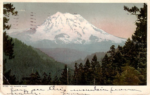 Mount Rainier Washington WA 1907 Vintage Postcard - 3840