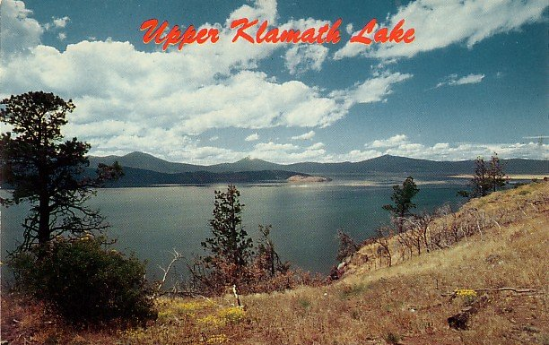 Upper Klamath Lake in Oregon OR Chrome Postcard - 0004