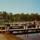 Greetings from Shad Landing State Park in Maryland MD Chrome Postcard - 0005
