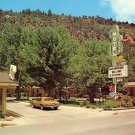 Siesta Motel with Retro Cactus Sign in Durango Colorado CO Chrome Postcard - 0030