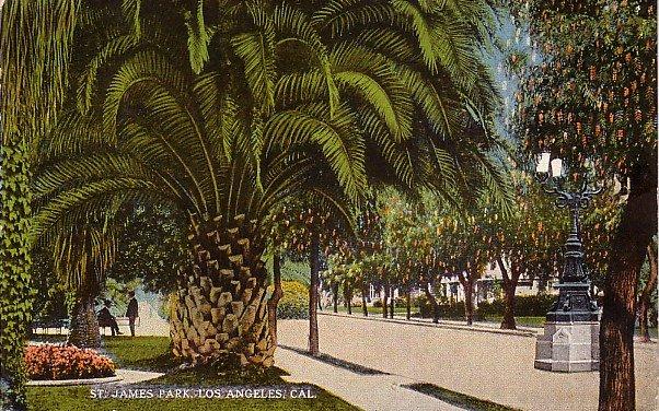 St. James Park in Los Angeles California CA Vintage Postcard - 0040