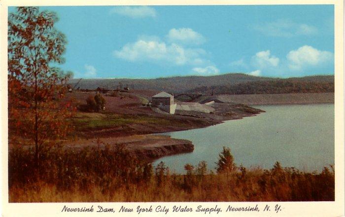 Neversink Dam in New York NY, 1954 Curt Teich Chrome Postcard - 0115