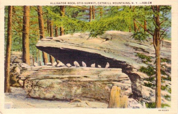 Alligator Rock at Otis Summit in Catskill Mountains New York 1934 Curt Teich Linen Postcard - 0281